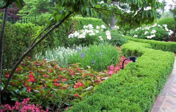 Learn the Benefits of Using Drip Irrigation in Your Garden